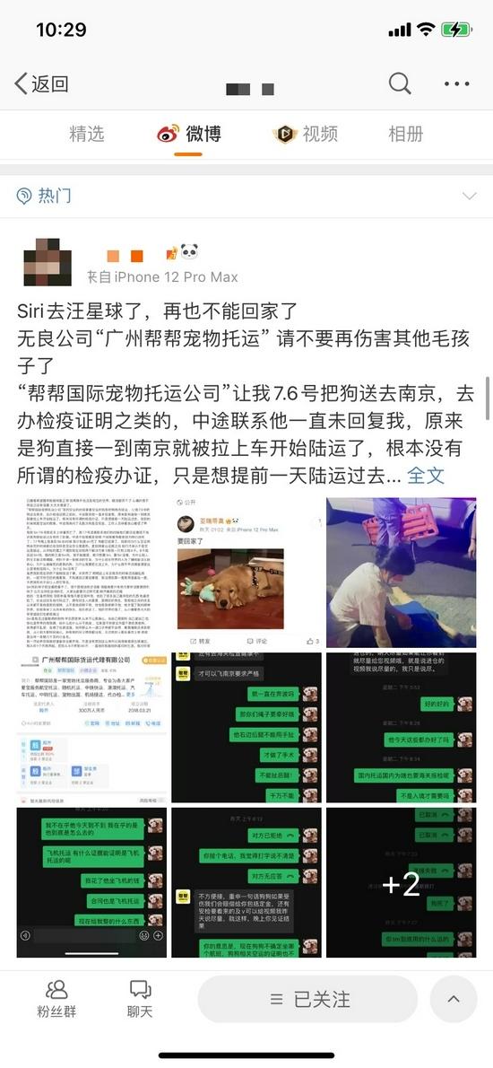 帮帮货运收空运钱走陆运致金毛犬死亡广州市监部门介入