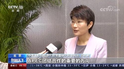 亚太经合组织领导人非正式会议中方为亚太经济复苏注入新思路与新动力